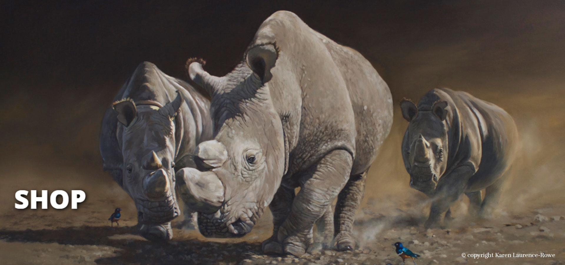 helping-rhinos-charity
